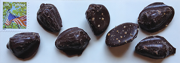 pieces of chocolate pieces
