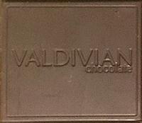 Valdivian Square