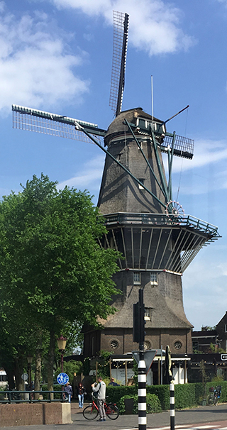 Cacao Windmill